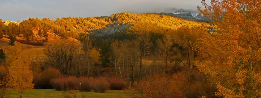 Montana Real Estate Market