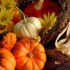November Greetings!
